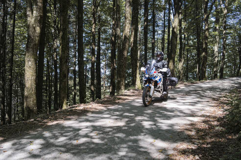 Motorcyclist on a trip on a forest road - FBAF01509