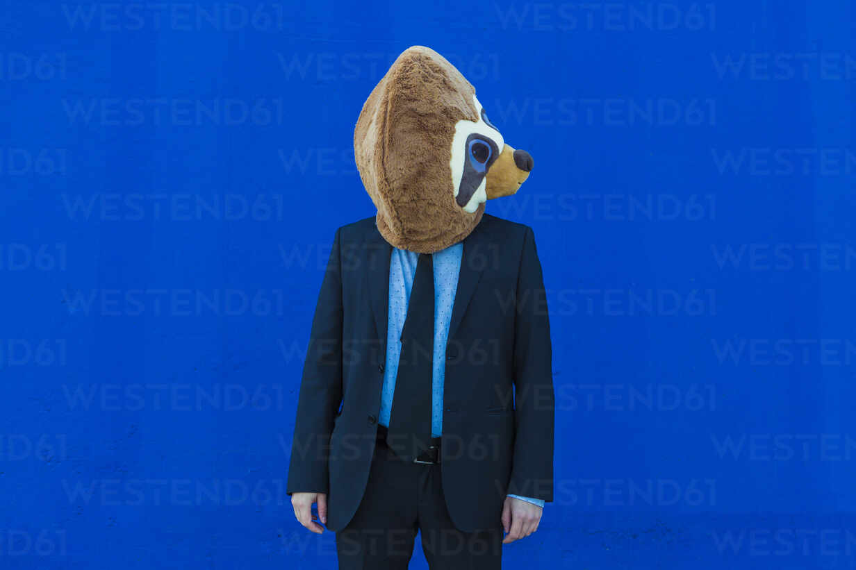 Businessman in black suit with meerkat mask standing in front of blue wall - XLGF00038 - Xavier Lorenzo/Westend61