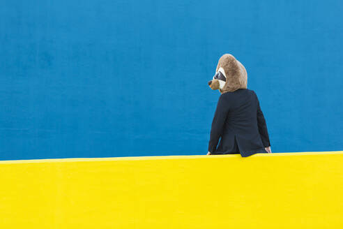 Businessman with meerkat mask sitting on yellow wall in front of blue background - XLGF00059