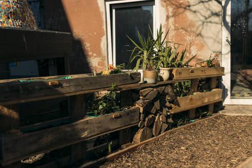 Individual garden at a run down house - GUSF03601