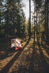 Tent in the woods, with a person sleeping inside in a sleeping bag - GUSF03691