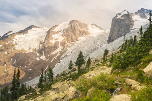 The Spires and Glacier in Bugaboo Provincial Park, British Colum - CAVF80325