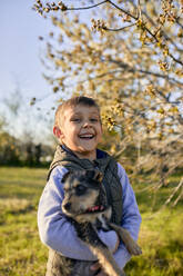 Portrait of laughing boy holding dog on a meadow - ZEDF03322