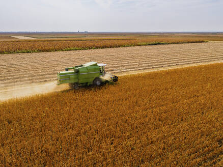 Aerial view of combine harvester on a field of soybean - NOF00077