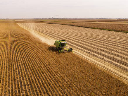 Aerial view of combine harvester on a field of soybean - NOF00080