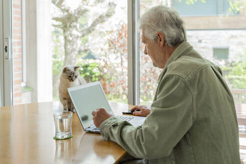 Side view of retired elderly man using laptop while sitting table by window - AFVF06171