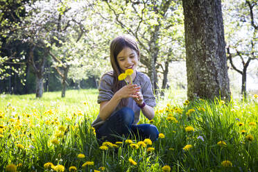 Portrait of girl picking dandelions on a meadow - LVF08862