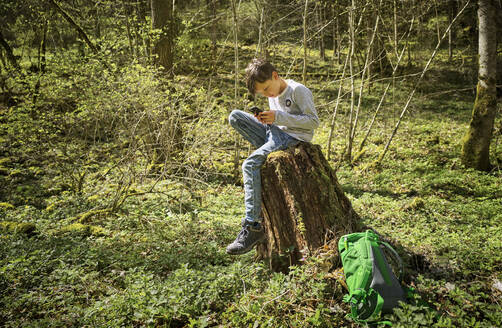 Full length of boy sitting on tree stump while using smart phone in Swabian Jura forest during hiking - DIKF00476