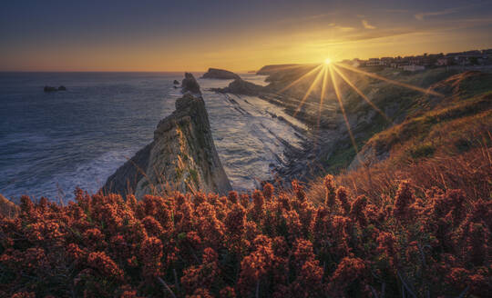 Spain, Cantabria, Heather blooming at edge of coastal cliff at sunrise with Urros de Liencres in background - DVGF00087