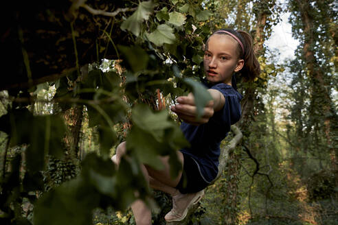 Side view of girl climbing on tree in forest - AUF00374
