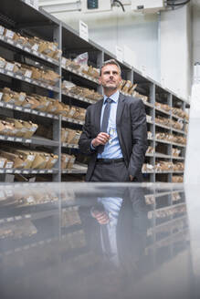 Portrait of a confident mature businessman at a shelf in a factory - DIGF10537
