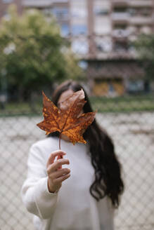 Teenage girl holding dry maple leaf in front of face while standing against chainlink fence - GRCF00223