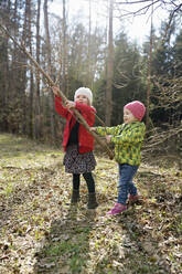 Two little sisters playing with branch in forest - BRF01444