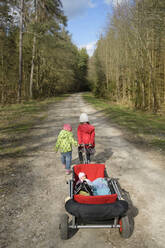Back view of two little sisters pulling trolley on forest track - BRF01447