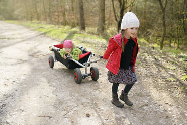 Smiling little girl pulling trolley with her younger sister on forest track - BRF01450
