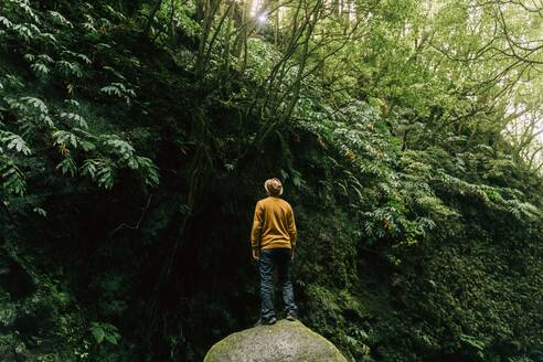 Rear view of man standing in lush landscape on Sao Miguel Island, Azores, Portugal - AFVF06291