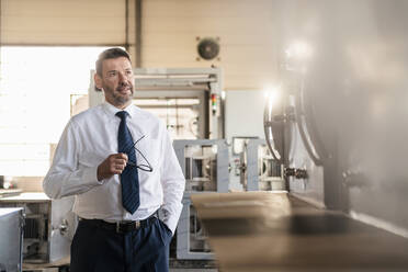 Portrait of a confident mature businessman in a factory - DIGF11089