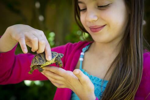 Smiling girl's hands holding small tortoise - LVF08900