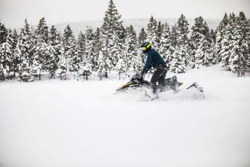 Side view of man snowmobiling on a snowy day. - CAVF82044