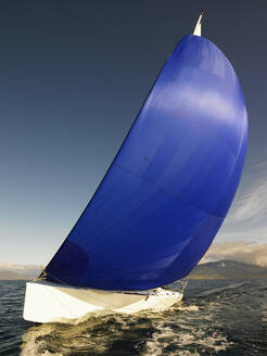 Sail boat with rigged blue spinnaker sail in Iceland - CAVF82155