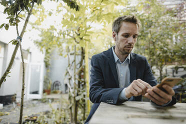 Buasinessman using smartphone in backyard - GUSF03853