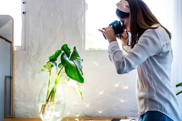 Female photographer photographing plant in glass vase at home - ERRF03890