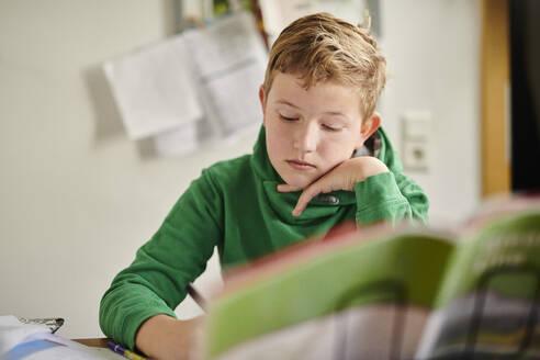 Dedicated boy studying at home - MMIF00267