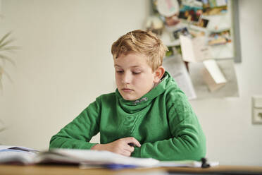 Boy studying at home - MMIF00270
