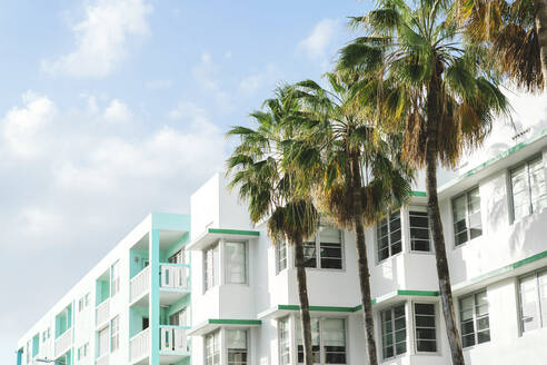 Art deco buildings and palm trees against sky during sunny day, Florida, USA - GEMF03786