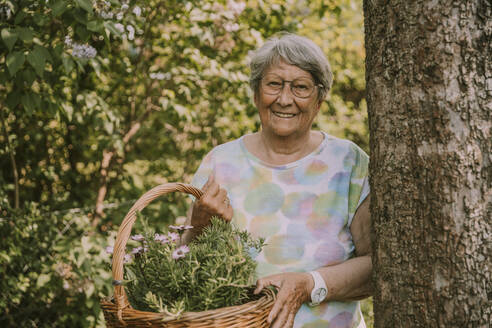 Smiling retired senior woman holding basket with flowers and herbs while standing by tree at garden - MFF05864