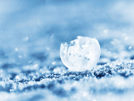 Frosted bubble in winter - BSTF00170