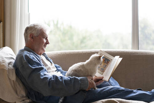 Senior man reading book while sitting with cat on sofa by window at home - AFVF06563