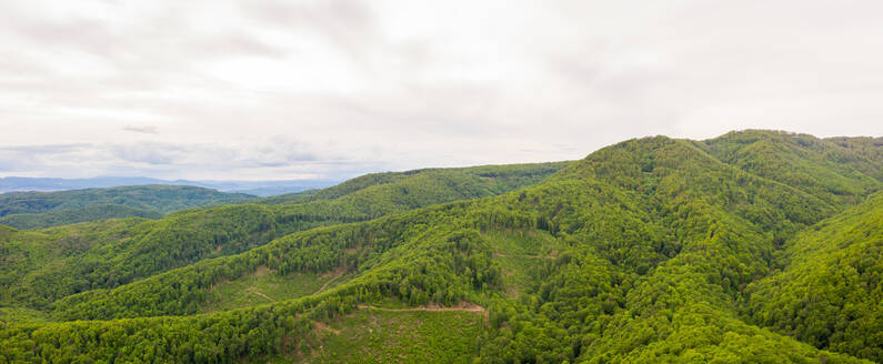 Panoramic aerial view of national park forest at Medvednica mountain, Zagreb, Croatia. - AAEF08717