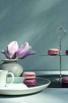 Macaroons on cake stand made of records - GISF00594