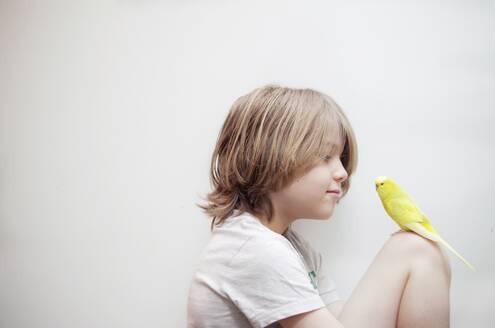 Portrait Of Boy With Bird - EYF05090