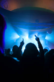 Crowd cheering during electronic music festival - NDF01070