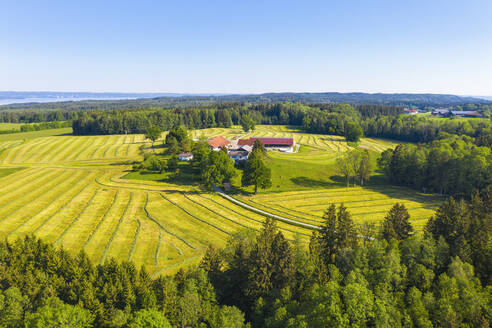 Germany, Bavaria, Oed, Drone view of small countryside hamlet surrounded by oilseed rape fields in spring - SIEF09928