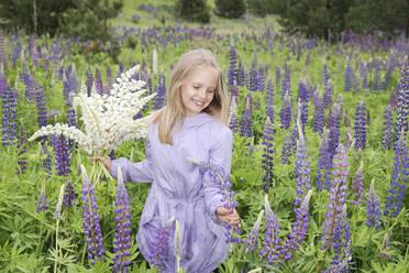 Portrait of happy girl wearing purple coat picking lupines in a field - EYAF01174