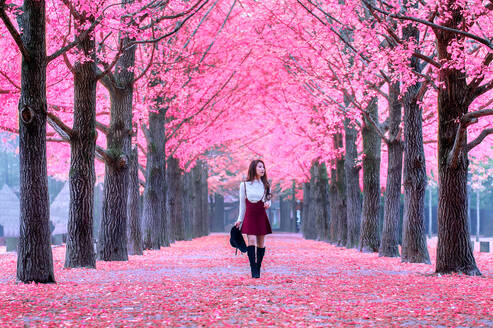 Young Woman Looking Away While Walking On Field Amidst Cherry Blossom At Park - EYF07728