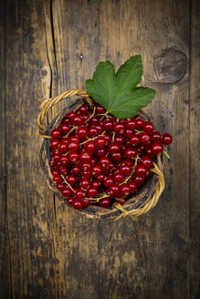 Small wicker basket with ripe red currant berries - LVF08934