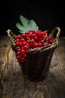 Small wicker basket with ripe red currant berries - LVF08937