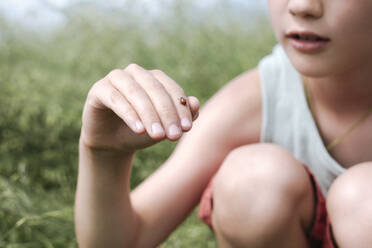 Crop view of boy in nature with ladybird on his finger - EYAF01183