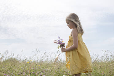 Blond little girl wearing yellow dress standing on a meadow with bouquet of picked field flowers - EYAF01189