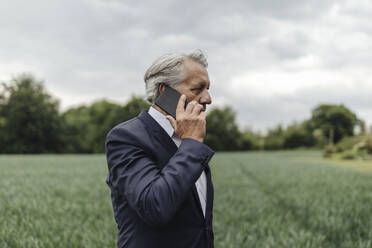 Senior businessman on the phone on a field in the countryside - GUSF04065