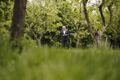 Senior businessman in a rural garden - GUSF04149