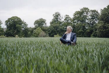 Senior businessman sitting on a chair in a field in the countryside - GUSF04161