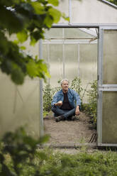 Senior man sitting in a greenhouse - GUSF04176