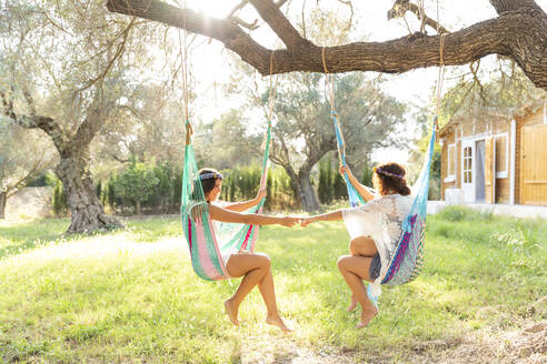 Young women holding hands while sitting in hammocks at yard - LVVF00142