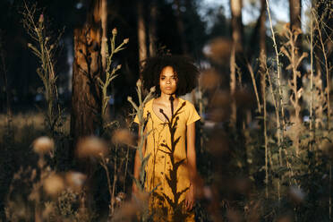 Young woman with afro hair standing amidst plants in forest during sunset - TCEF00875