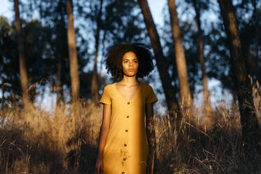 Thoughtful young woman with afro hair standing amidst plants in forest during sunset - TCEF00878